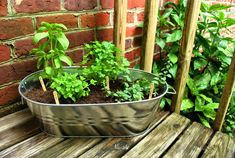 An Herb Garden In A Metal Tub Cheap metal bin turned into an herb garden. Thinking I want to go this route with my herbs. Simple and portable.Cheap metal bin turned into an herb garden. Thinking I want to go this route with my herbs. Simple and portable. Balcony Herb Gardens, Outdoor Gardens, Balcony Gardening, Outdoor Pots, Diy Herb Garden, Vegetable Garden, Container Gardening, Gardening Tips, Culture D'herbes