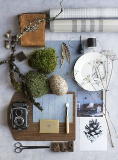 Mood Board | Interior Design Trends