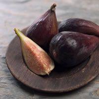 Fig Tree Fragrance Oil