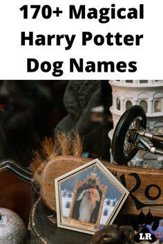 This article is filled with 170+ of the best male and female character names! As an ABSOLUTE die-hard Harry Potter FAN! #2020 #2019 #Unisex #Short #White #Husky #Food #Military #Nature #Little #Boho #BerneseMountain #Greek #List #Popular #Golden Retriever #Cutest #French #Rare #Rustic #Lab #Weird #With Meaning #Awesome #Meaningful #Brown #Italian #Different #Preppy #Celebrity