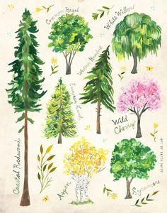 Trees | Nature Chart | Educational Wall Art | Outdoorsy | Katie Daisy | 8x10 | 11x14