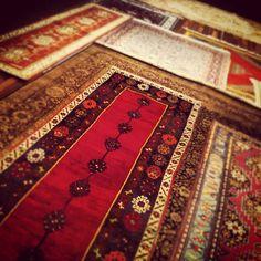 Go on a magic carpet ride!