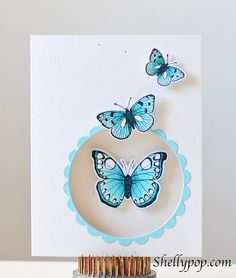 handmade card ... like the window with a scallop frame opening to the inside ... graduated size butterflies make it lo                    ok like they are escaping from within ... Butterflies#3