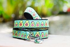 Avocado Dog Leash