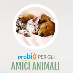 Probio Animali Domestici