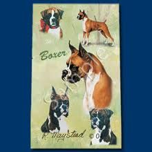 Boxer Dog Writing Pen - Ruth Maystead