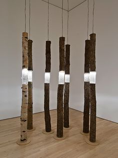 'Arboreal fragments' (2004) - cast glass, found wood, lights