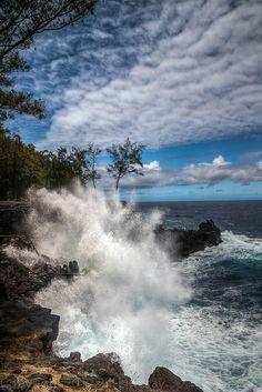 Mackenzie State park_Hawaii by Bill Lindsay, via Flickr