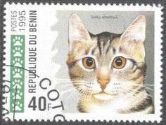Benin cat stamp.