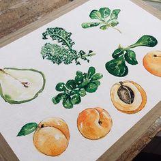 Food illustration in progress. I just love it! You can get a copy and see more soon.).#foodillustration #foodillustrator #foodart #foodie #foodgasm #cooking #cook #illustration #art #vegan #bratislava #slovakartist #vegetarian #artist #foodpainting #foodblog #foodblogger #lovefood #delicious #yummy #bratislavafood #food #fruit #vegetable #jedlo #salat #smoothie #greensmoothie Food Illustrations, Illustration Art, Food Painting, Food Drawing, Food Art, Love Food, Vegetarian, Personal Portfolio, Bratislava