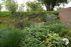 Pin by groengroep bv on tuinen van de groengroep pinterest