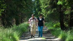 Wandern in Erzgebirge