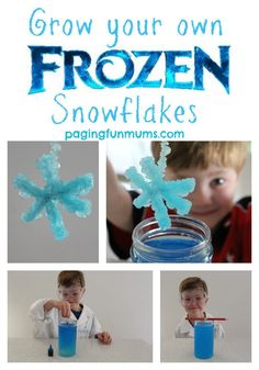 Grow your own Frozen themed Snowflakes - Science and fun rolled into one!