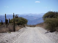 The drive between Salta and Tucuman in northern Argentina is nothing short of brilliant.