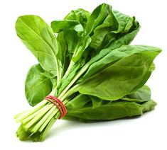 Spinach Seeds Matador Price for Package of 100 seeds. Spinach Matador is an excellent early all round variety with oval and smooth leaves. Spinach Leaves, How To Boost Your Immune System, Aquarium Accessories, Vegetarian Protein, Seeds Online, Garden Bulbs, Cooking With Olive Oil, Seeds For Sale, Vitamin E
