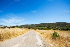 Summer rural road Photos Rural country road in a summer sunny day. by Goods & Foods