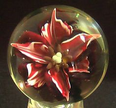 "RPC Marbles! XXLContemporary  Hand Made Glass Marble ""Merlot Lily"" #PremiumMarbles #Contemporary"