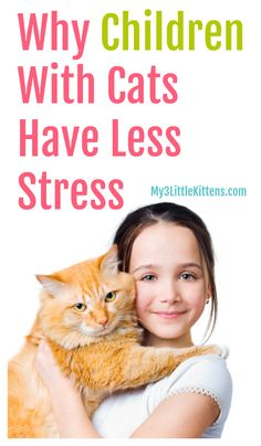 There are many reasons why children with cats have less stress. Your kitty is helping your child daily!
