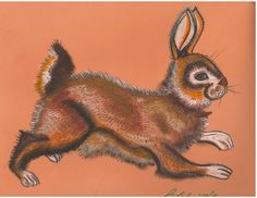 I seem to be enjoying bunnies these days. Drawn by Belinda Baardsen, Artist for Animal Rescue, July 25, 2013, Colorado