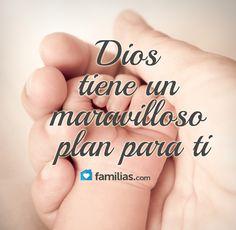 Sus planes, son perfectos