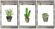 Set de 3 láminas de cactus Acuarela cactus Cactus acuarela