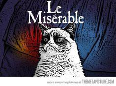 Funny pictures about Grumpy cat's favorite musical. Oh, and cool pics about Grumpy cat's favorite musical. Also, Grumpy cat's favorite musical. Meme Grumpy Cat, Cat Memes, Grumpy Kitty, Kitty Cats, Kittens, Cat Puns, Les Miserables, Crazy Cat Lady, Crazy Cats