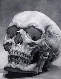 Skull study, me, watercolor, 24,5x33cm, 2019. #artideas #art Skull Anatomy, Anatomy Art, Art Chicano, Skull Reference, Bild Tattoos, Art Tattoos, Skull Tattoos, Skull Sketch, Skull Artwork