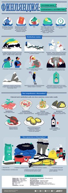 Финляндия: что нужно знать, отправляясь в путешествие? Инфографика   Инфографика   Вопрос-Ответ   Аргументы и Факты