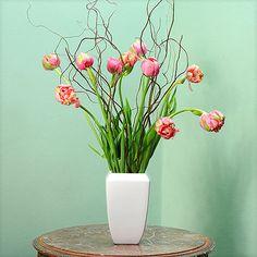10 gefüllte französische rosa Tulpen mit Weide