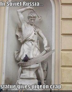 In Soviet Russia, statues give pigeons crap. Des Photos Saisissantes, Epic Photos, Strange Photos, Cool Photos, Amazing Photos, Time Pictures, Funny Animal Pictures, Funny Images, Funny Photos