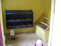 inside a chicken coop | Sgtmom52s Chicken Coop - BackYard Chickens Community