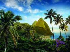 St. Lucia's 238 square miles have a lot to offer. Explore everything from mountains and rainforests to active volcanoes and coral reefs on this dynamic little island.