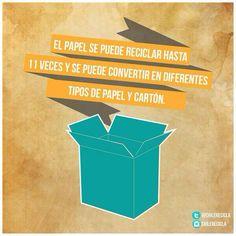 El papel se puede reciclar hasta 11 veces