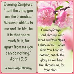 Evening Scripture and Prayer #atruegospelministry