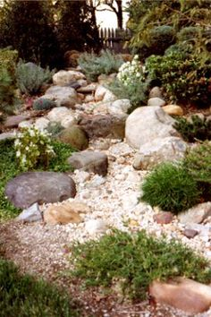 75 Gorgeous Dry River Backyard Landscaping Ideas On Budget Landscaping With Rocks, Front Yard Landscaping, Landscaping Ideas, Hillside Landscaping, Dry Riverbed Landscaping, Dry Garden, Lawn And Garden, Rain Garden, Garden Edging