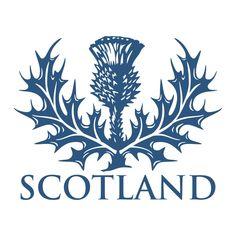 Outlander, Scottish Symbols, Scottish Thistle Tattoo, Doodle Drawing, Irish Celtic, Celtic Art, Thinking Day, Celtic Designs, Scottish Highlands