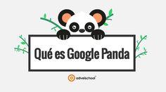 Google Panda, Qué es y Cómo Afecta Nuestras Páginas Web