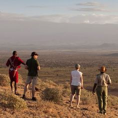 A walking safari is a wildlife enthusiast's dream!  You get the opportunity to experience and observe animals in their natural habitat with a dedicated guide who will provide you with insight and insider knowledge about the wildlife that you spot. You become  one with nature as you explore the beautifully untouched African bush.🐾 #explorer #explorersafari #walkingsafari #safari #africa #wildlife #outdoors #Nature #wildlife #travel #traveltofrica #bucketlist #experiences #africayourway African Vacation, One With Nature, Africa Travel, Habitats, Opportunity, Safari, Insight, Wildlife, Knowledge