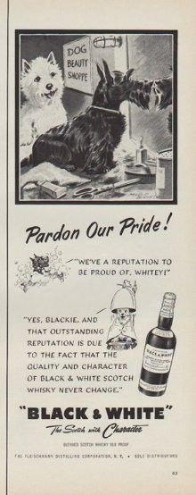 """Description: 1952 BLACK & WHITE SCOTCH vintage print advertisement """"Pardon Our Pride !""""""""We've a reputation to be proud of, Whitey! Yes, Blackie, and that outstanding reputation is due to the fact that the quality and character of Black & White Scotch Whisky never change. Black & White -- The Scotch with Character"""" Size: The dimensions of the half-page advertisement are approximately 5.5 inches x 14 inches (14cm x 36cm). Condition: This original vintage advertisement is in Very Good Condition…"""