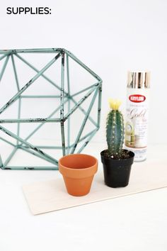Geometric Globe Planter. I actually prefer the globe with the patina instead of the after, when it's gold.