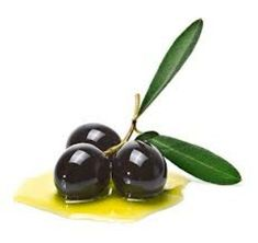 an olive branch with three premium olives on some olive oil on a white background. Olives, Vinager, Fruits Photos, Olive Oil Bottles, Tapas Bar, Alcohol, Liquid Gold, Olive Tree, Food Packaging