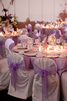 Purple reception
