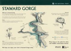 National Trust map of the Staward Gorge Red Squirrel, Secret Places, National Trust, Mammals, Banks, Woodland, Scenery, River, Map