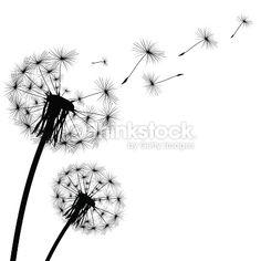 dandelion illustrations vector images art herb clipart rh pinterest com free blowing dandelion clipart dandelion clip art black and white