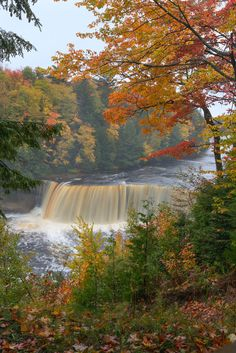 There is no better place to view the splendor of the fall season than in Michigan's Upper Peninsula! Tahquamenon Falls at Tahquamenon Falls State Park