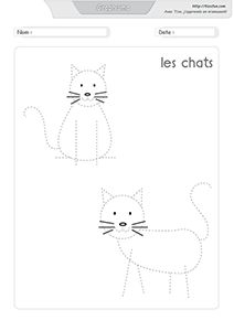 graphisme-dessiner-les-chats