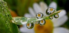 """drops"" by tugba kiper, via 500px."