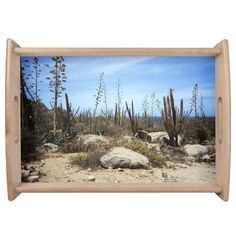 Aruba Landscape With Cactus Service Trays    •   This design is available on t-shirts, hats, mugs, buttons, key chains and much more    •   Please check out our others designs and products at www.zazzle.com/zzl_322881145212327*