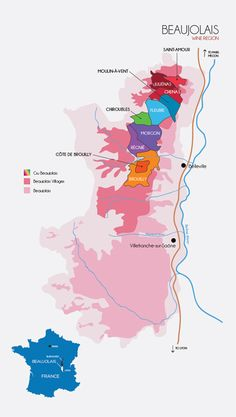 Podcast Ep. 23 - Winephabet Street; B is for Beaujolais • Dracaena Wines