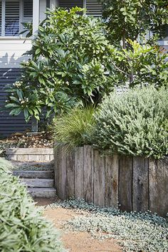 Small Garden Arbour, Garden Arbor, Backyard Garden Design, Gravel Garden, Garden Bed Layout, Beautiful Home Gardens, Australian Native Garden, Persian Garden, Concrete Stairs